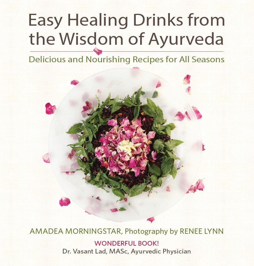Healing Drinks book