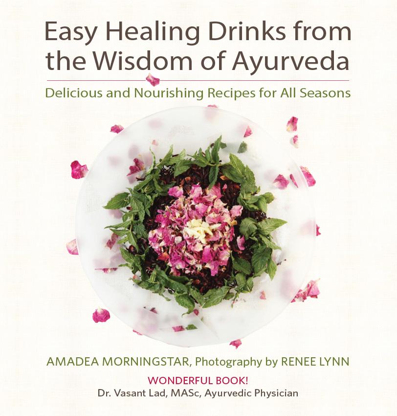 Healing Drinks book